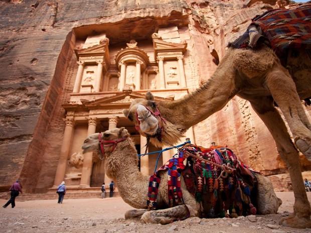 camels-petra-jordan_67981_990x742