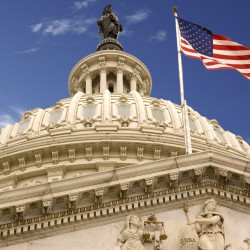 United_States_Capitol_Dome_and_Flag-1